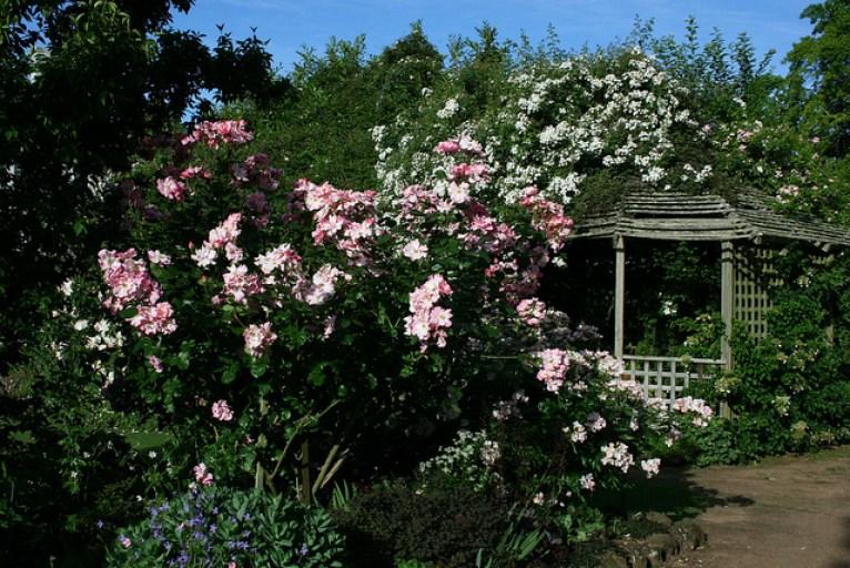 Brickendon's beautiful garden