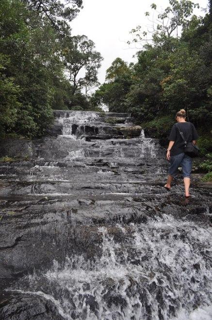 Mandulkelle Tea and Eco Lodge hiking to the waterfall
