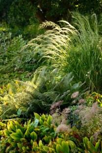 Hermannshof. Photo courtesy Carolyn Mullet, Carex Tours