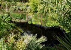 Greenwall in Hamilton Gardens, North Island New Zealand
