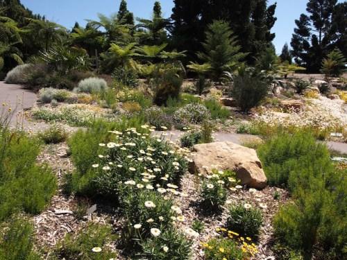 Mt Annan Botanic Garden, south-west Sydney