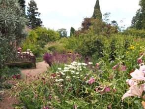 Perennial garden in Hobart Botanic Garden