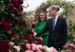 The Duke and Duchess of Cambridge visit the RHS Chelsea Flower Show 2016 in London, UK Monday May 23, 2016. RHS / Hannah McKay