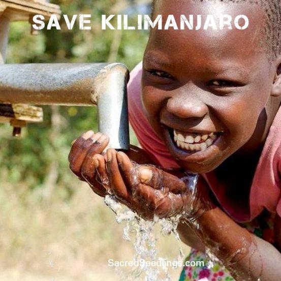 Save Kilimanjaro