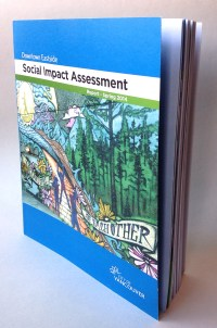 Downtown Eastside Social Impact Assessment Report | Spring 2014