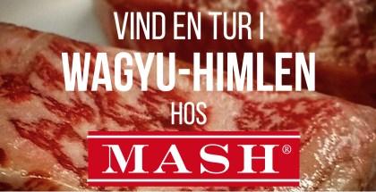 MASH_konkurrence