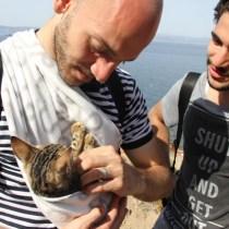 Refugiado-sirio-grecia-gatinho