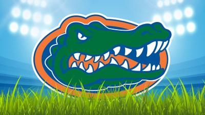 Gatorhead Stadium – Florida Gators Wallpaper