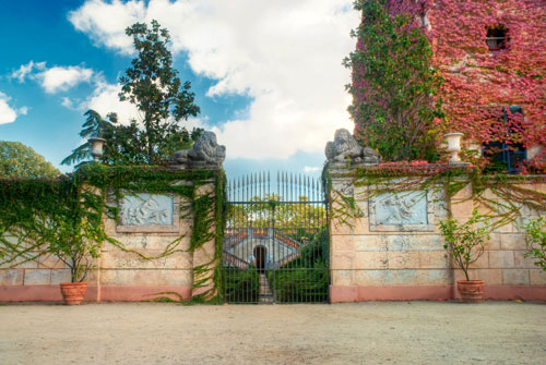 Boxwood - Barcelona, Spain
