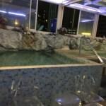 バンコクの温泉スカイ(スパ)