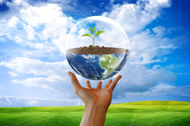 Экологии необходим общественный контроль