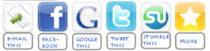 Social Media Buttons - Found at the bottom of every gCaptain Article