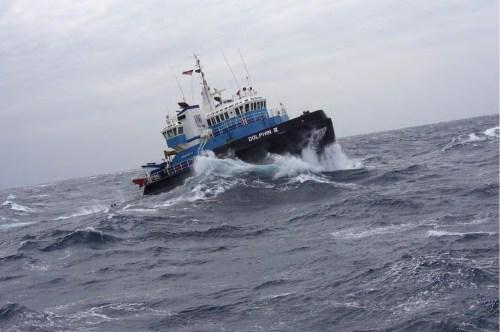 Dolphin Marine Anchor Handling Tug - Workboat