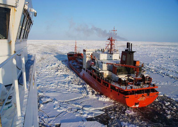 bering sea icebreaker coast guard cutter healy renda