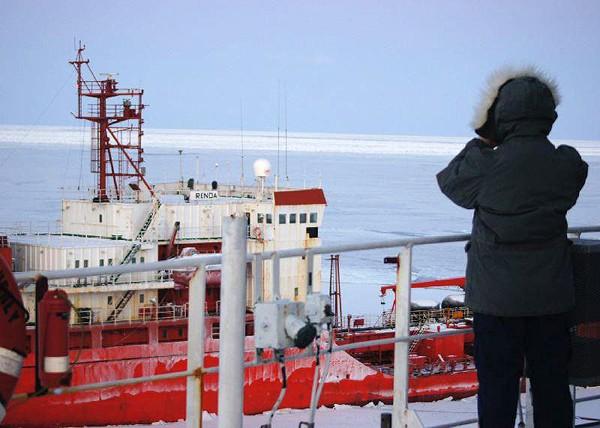 icebreaker watchstander bering sea uscgc healy renda