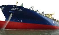 hyundai tenacity containership