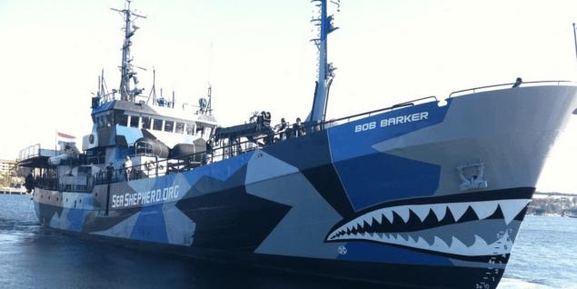 Sea Shepard Razzle Dazzle Paint Scheme
