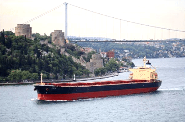diana shipping panamax bulk carrier