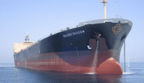 "Bulk Carriers Continue to be Built While China Says GDP is ""Flexible"""