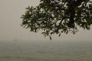 Indonesian Forest Fires Set Singapore Smog Record, Raise Concerns Over Safe Navigation
