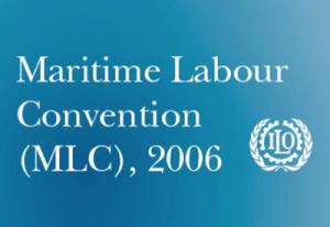 MLC 2006 Logo