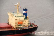 Star Bulk Carriers Corp. – A Case Study on Private Equity Groups (Part II)