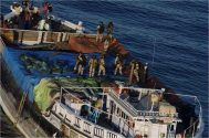 Somali Pirates' First Hijacking Attempt of 2014 Ends with Arrests