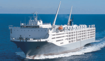 Stinky Situation: Livestock Carrier Spends 72 Hrs. Adrift with 42,000 Sheep, Cows