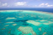Australia Finds Oily Water Patches Near Great Barrier Reef