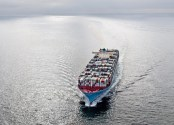 Maersk Diverts Second Ship to London Gateway Amid Felixstowe Congestion