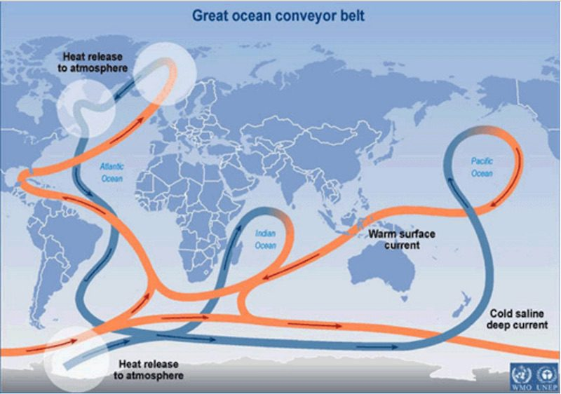 Global Conveyor Belt Ocean Currents