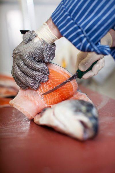 salmon superbug filet
