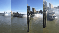 Video: Packed Tour Boat Slams Into River Thames Pier in Downtown London