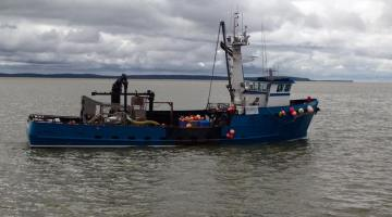 Search Suspended for Six Missing Crew of F/V Destination in Bering Sea