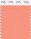 PANTONE_15-1340_Cadmium_Orange