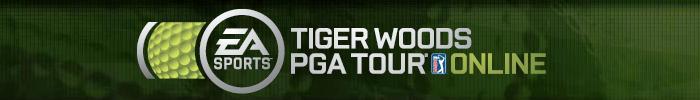 Tiger Woods Online Title