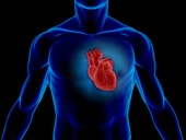 beating_heart