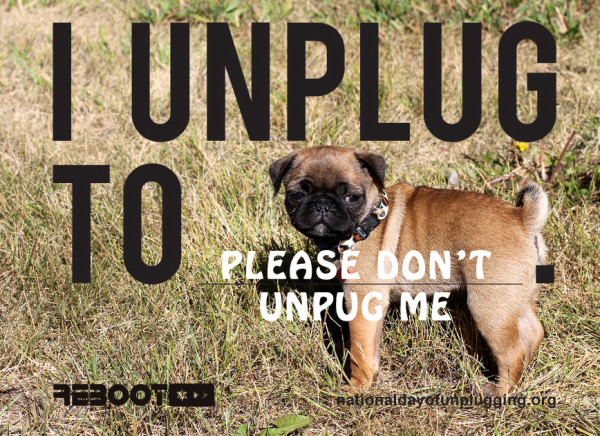 please-dont-unplug-pug-e1362157910214