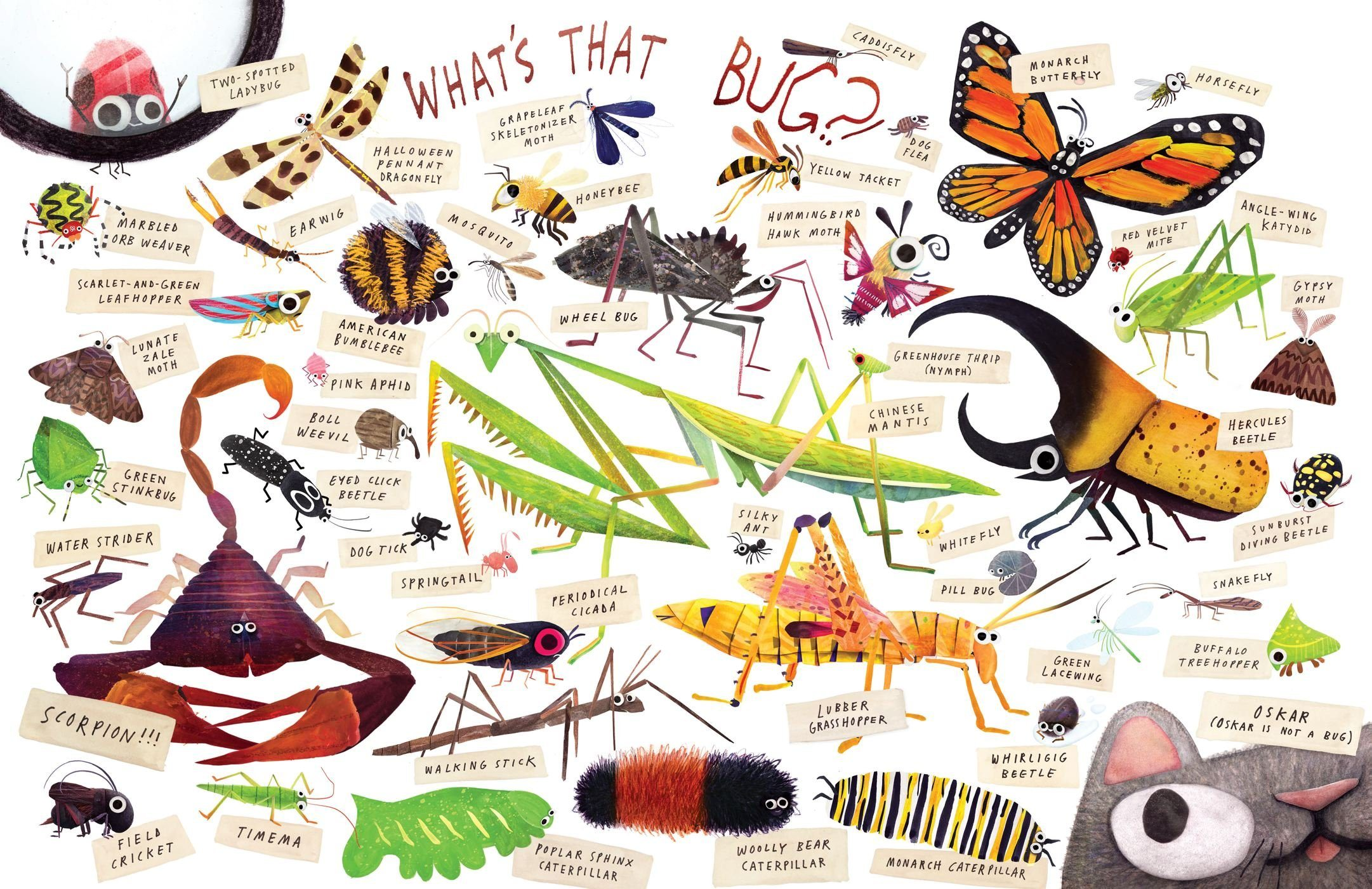 Some Bugs interior spread