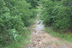The property has been hard to traverse because so many of the roads are flooded.