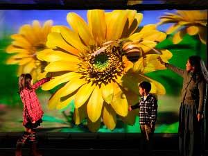 Crean en Japón una pantalla 3D gigante