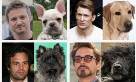 The Avengers y sus Doppelgängers, aunque estos son perros #Humor