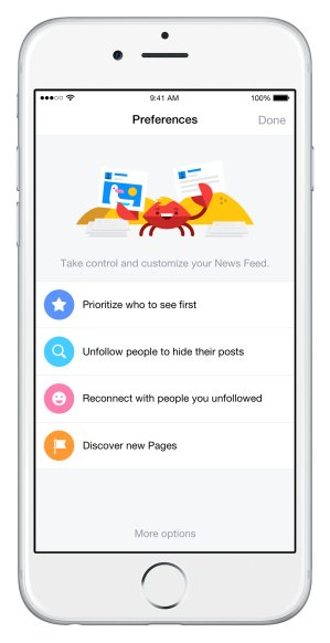 facebook-news-feed-ios-preferences