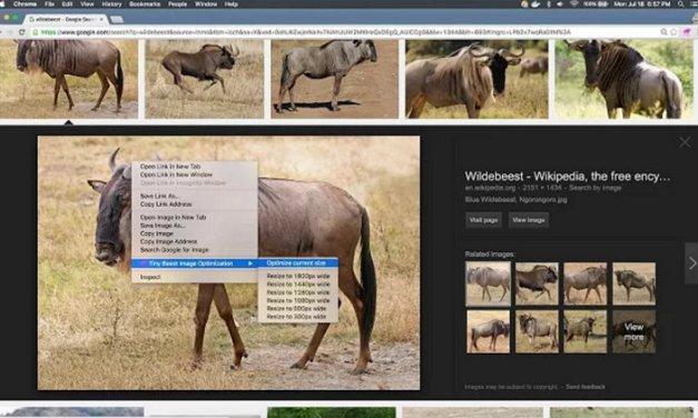 Tiny Beest Image Optimization, extensión de Chrome para redimensionar y optimizar imágenes