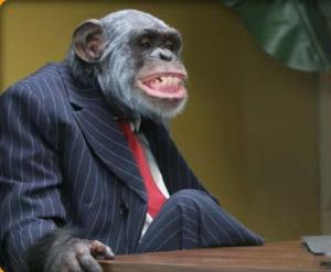 Monkey In Striped Suit