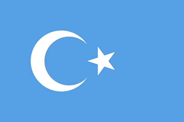 national-flag-of-east-turkestan
