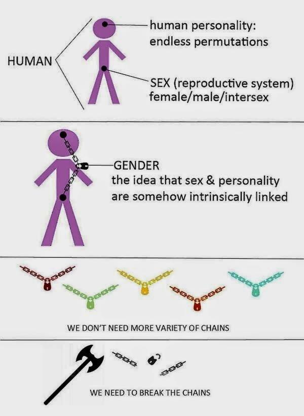 Sex and Gender image
