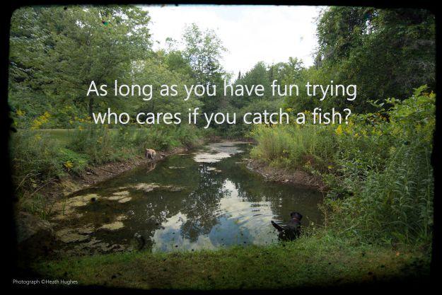 catch-a-fish