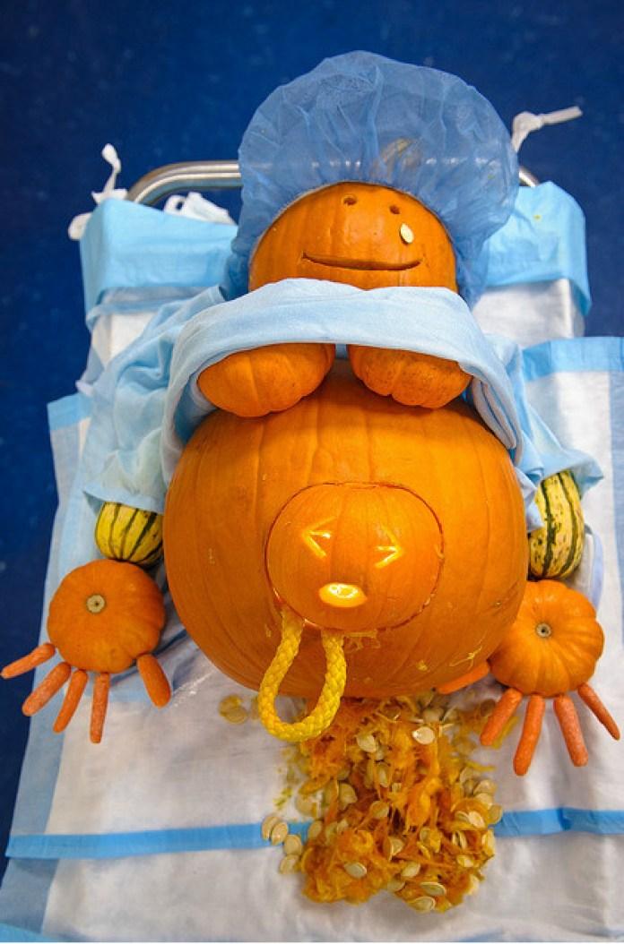 pumpkin-birth6