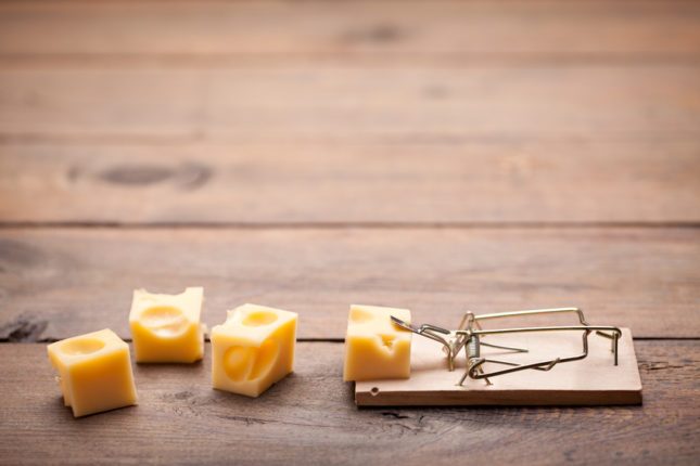 Close up of mouse trap on old wooden table